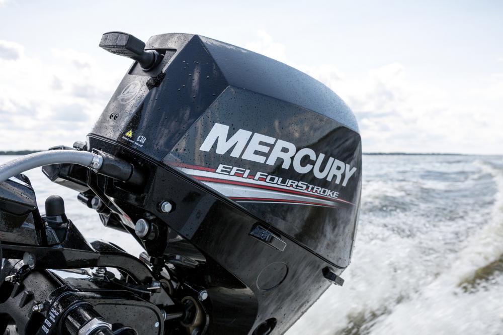 Mercury f15 e start